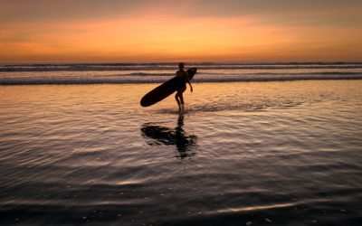 What Surfing Teaches About Success Mindset In Business
